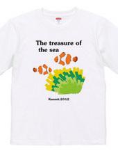 Treasures of the sea