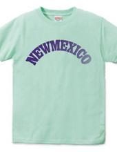 NEW MEXICO -R66-