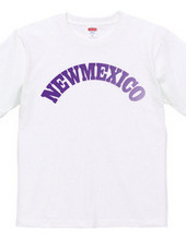 NEW MEXICO -R66-