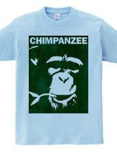 Chimpanzee face 01