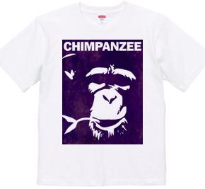 Chimpanzee face 02