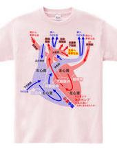 心臓 医療系 図