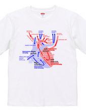 心臓 医療系 図(英語)