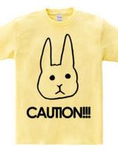 CAUTION!!!