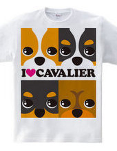 I ♥ Cavalier