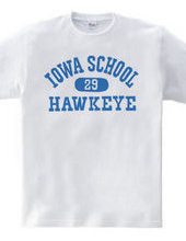 Iowa Hawkeye oldschool style College
