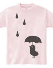 Rain and bird