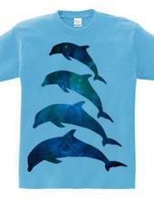 Family Dolphin