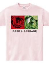 Rose & Cabbage
