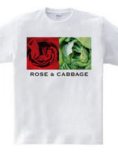 Rose & Cabbage
