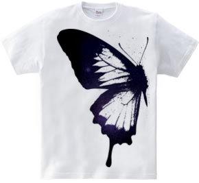 butterfly wing 01