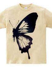 butterfly wing 02