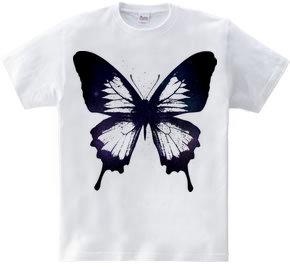 butterfly wing 03