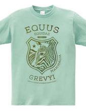 EQUUS GREVYI
