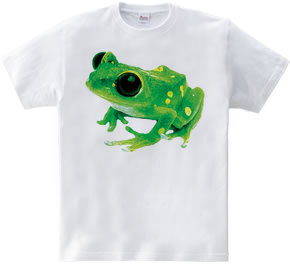 カエル-1