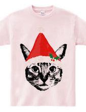 Cat & santa's hat