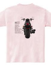 A Harley-Davidson*VRSCDX  night rod / do
