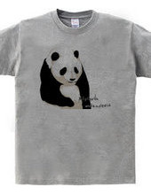 panda (white and gray)