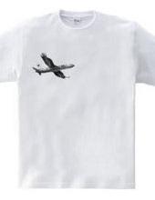 EAGLE AIRPLANE