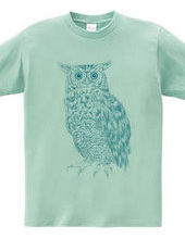OWL (blue and green)