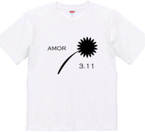 amor 3.11
