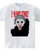 I M not JUNKY