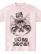 Nobigao BUSAKAWA Cat