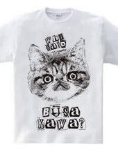 Nobigao ブサかわ猫