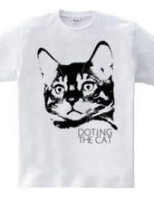 DOTING THE CAT