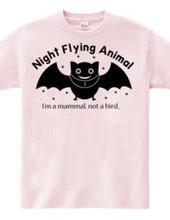 夜行性動物