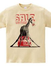 Mini Cooper with giraffe TypeA