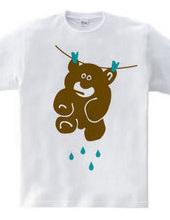 Teddy s Wet