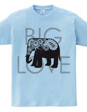 ペイズリーのゾウ: Big Love