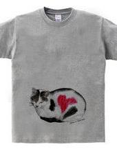 Stray cat & heart