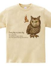 Owl kitten