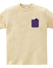 Eggplant Pocket