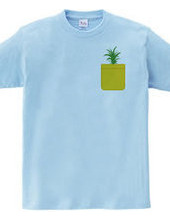 Pineapple Pocket