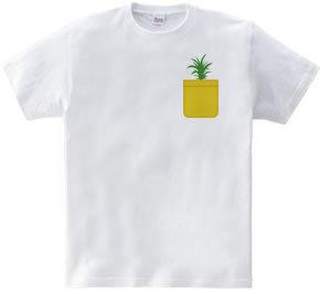 Pineapple Pocket