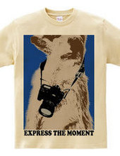 express the moment