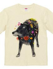 花が咲くのを嫌がり犬