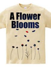 Flower Blooms