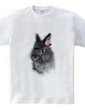 Dot Rabbit