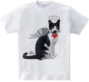 のら猫天使
