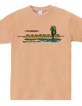 水泳 キレイなプールとカエル