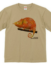 mango color chameleon