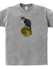 月に乗るのら猫