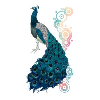 peacock [B]
