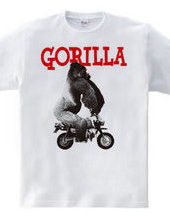 Motorcycle Honda animal 02