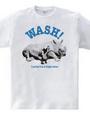 Animal Wash A1