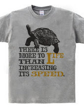 Just to increase the speed, but is not l